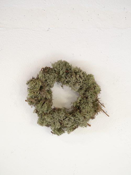 naturalForest-2